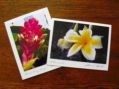 Hawaiian Flower Note Cards Photo Cards Plumeria by sferradesigns