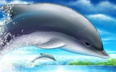 sunset sea dolphins seascapes mammals 1600x1200 wallpaper ...