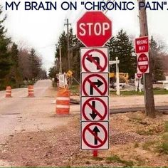 Severe chronic intractable pain. And my brain.