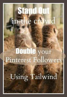Optimize tailwind (a pinterest scheduler) and double your pinterest followers! PintSizeFarm.com   typeaparent