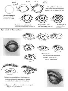 Eyes Step By Step Drawing How To Draw Female Eyes Step Step Online Drawing Lessons Drawing Heads, Nose Drawing, Art Drawings, Pencil Drawings, Drawing Lessons, Drawing Techniques, Drawing Tips, Drawing Tutorials, Realistic Eye Drawing