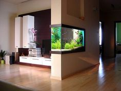 Aquascaping and interior design. Love how the aquarium is built in the wall!