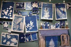 Print DIY: Silkscreen via App & Sunlight Impression Textile, Sun Prints, Diy Inspiration, Ecole Art, Cyanotype, Illustration, Art Graphique, Art Plastique, Art Lessons