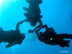 My girlfriend and I are both PADI dive masters and work part-time for a local Vancouver Island Dive shop . We both learned to dive in cold water and have done all of our training in cold water. We dive regularly, averaging around 160 dives a year.