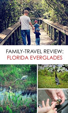 The best places to walk with wildlife and observe nature with kids.national and state parks.Florida Everglades: More Than Just A Swamp Florida Vacation, Florida Travel, Florida Keys, Florida Girl, Everglades National Park, Florida Everglades, Vacation Destinations, Vacation Spots, Beach Vacations