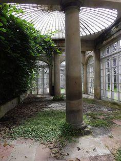 Inside the Conservatory | Matthew Wells | Flickr