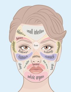 Pimple Face Mapping, Skin Mapping, Gesicht Mapping, Pimples On Face, Acne Face, Facial Acne Map, Acne Causes, Sensitive Skin Care, Body Organs