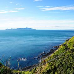 A bridge with a view. #NZMustDo [📍Paekākāriki Escarpment (Te Araroa Trail), Wellington. ���