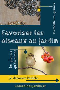 Modifier l'article ‹ Un matin au jardin — WordPress Bird, Potager Bio, Animals, Wordpress, Pets, Best Life Hacks, Lawn And Garden, Animales, Animaux