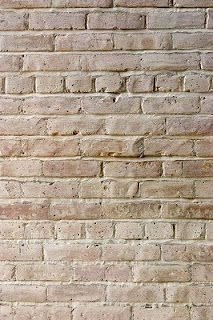 White painted brick for one wall - Tips for whitewashing brick. Start with paint + water. Use flat paint. Choose a warmer tone white. White Wash Brick Fireplace, Painted Brick Walls, Fireplace Update, Brick And Stone, Diy Interior, Interior Design, Exposed Brick, Farmhouse Design, My Living Room