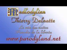 Le mix des nattes - Thierry Delnatte