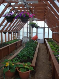 4 Easy Steps to Set-Up Your Own Backyard Aquaponics System - Tools And Tricks Club Diy Greenhouse Plans, Backyard Greenhouse, Greenhouse Wedding, Greenhouse Film, Small Greenhouse, Jardin Decor, Aquaponics System, Aquaponics Diy, Aquaponics Greenhouse