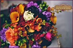 Rika and Josh : Plum in Love | Historic Cedarwood | All Inclusive Designer Weddings