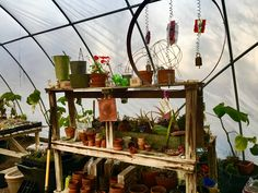 The potting bench in the greenhouse at URBANHERBAL