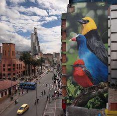 Street Art by Mantra in Bogota, Colombia. ##StreetArt ##Graffiti ##Mural ##Bogota ##Colombia - Christian Peters - Google+