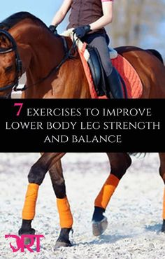 7 exercises to improve lower body leg strength and balance. 7 exercises to improve lower body leg strength and balance. Horseback Riding Tips, Horse Riding Tips, Horse Tips, Therapeutic Horseback Riding, Horse Exercises, Body Exercises, Balance Exercises, Training Exercises, Training Tips