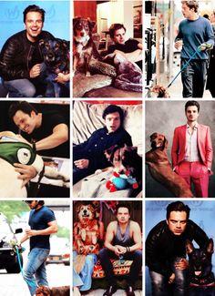 Sebastian ⭐️ Stan with animals