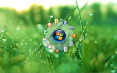 """Search Results for nokia wallpaper"""" – Adorable Wallpapers Love Wallpaper, Water Drops, Green Grass, Dandelion, Japanese, Christmas Ornaments, Holiday Decor, Flowers, Plants"""