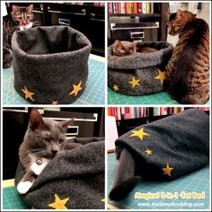 The Cottage Market: 25 Fabulous DIY Pet Bed Ideas .part 2 She did not like this one at all! Diy Cat Bed, Diy Bed, Pet Beds Diy, Lit Chat Diy, Diy Pour Chien, Red Bedding, Felt Cat, Animal Projects, Cat Crafts