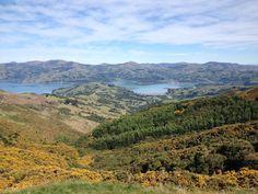 Prenez Place | Instagram | A quelques kilomètres de Christchurch se trouve la péninsule de Banks et le village d'Ataora.
