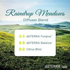 10 essential oil diffuser blends