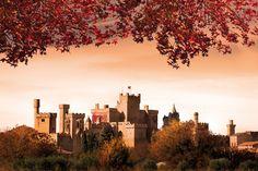 Castillo de Olite #Navarra :: Estudio Fotográfico Pujol