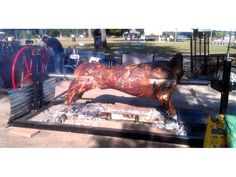 SpitJack - Tools for Food & Fire: The SpitJack Oxjack Whole Cow Rotisserie