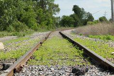 Old Railroad Tracks by Leonheart1292 on DeviantArt