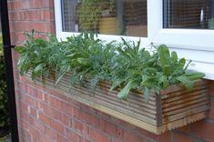 Garden ideas for lef