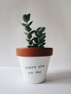 Boyfriend Gift Love Present Anniversary Gift Indoor Plant Pot Valentines Gift Kiss Gift Anniversary Planter Planter Pot Cute Planter - Plant Pot - Ideas of Plant Pot - Mistletoe Gift Kiss Gift Anniversary Planter Planter Pot Indoor Flower Pots, Indoor Plant Pots, Potted Plants, Cactus Plants, Cactus Decor, Cactus Art, Small Succulents, Succulents Garden, Planting Flowers