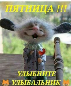 Good Thoughts, Positive Thoughts, Russian Humor, Happy Birthday Wishes Cards, Funny Expressions, Funny Qoutes, Wishes Images, Man Humor, Fun Workouts