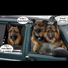 """Typical """"Cop Dogs"""""""