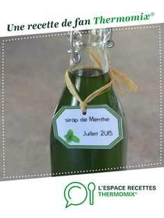 Sirop de menthe - Expolore the best and the special ideas about Liqueurs Smoothies Thermomix, Pro Cook, How To Cook Meatloaf, Charcuterie, Alcohol, Cocktails, Homemade, Bottle, Cooking