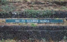 El cartel del autopista norte - http://www.miyoinquieto.com/el-cartel-del-autopista-norte/ -  Un día cualquiera de 2007, Anóniman subió a la ladera de una montaña, situada a la altura del Km 32 del autopista norte de Tenerife, construyó una valla de unos 20 metros y empezó a escribir mensajes en ella. Su idea era dejar mensajes de forma anónima para los muchos conductores que transitan d...  www.miyoinquieto.com