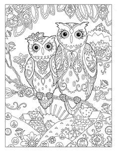 Relax With These 188 Free Printable Coloring Pages For Adults Owl From Dover Publications
