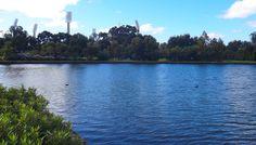 ozone reserve, perth city, park, lake vasto, riverside drive