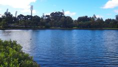 ozone reserve, perth city, park, lake vasto, riverside drive