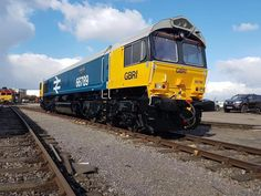 DBRf 66789  Photo by John Sykes