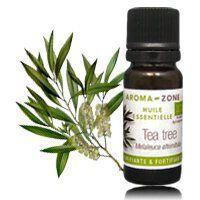 L'huile essentielle tea tree (arbre à thé), idéale pour lutter contre l'excès de sébum + Recette masque purifiant