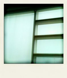 Light And Lines Obsession Blinds, Bookcase, Shelves, Curtains, Architecture, Glass, Home Decor, Style, Ghosts