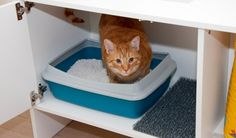 Hidden cat litter from UrbanCatDesign. Modern handmade cat furniture!