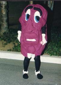 california raisins homemade costume made by me model tara moe - California Raisin Halloween Costume