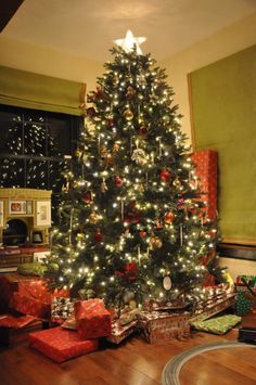Norway Spruce by Vermont Signature, Fan Photo - Balsam Hill