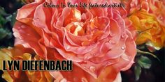 Lyn Diefenbach banner Landscape Art, Art Photography, Banner, Roses, Paintings, Drawings, Floral, Artist, Flowers