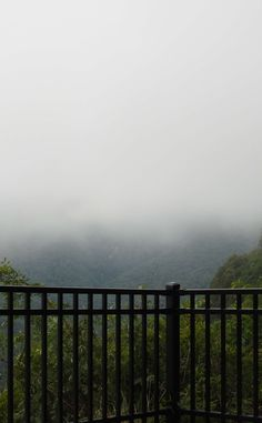 Caesars Head State Park | Travel | Vacation Ideas | Road Trip | Places to Visit | Cleveland | SC | Mountain | Waterfall | Natural Feature | Other Outdoor Place | State Park | Campground | Hiking Area | Scenic Point
