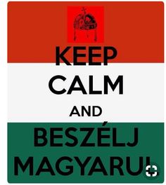 """""""Keep Calm & Speak Hungarian"""" Hungary History, Fortune Telling Cards, Bad Memes, Hungarian Recipes, Budapest Hungary, Keep Calm, Quotations, Funny Quotes, Funny Pictures"""