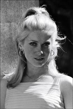 Catherine Deneuve, Classic Hollywood, Old Hollywood, Star Francaise, Retro, French Actress, Brigitte Bardot, Cannes Film Festival, Classic Beauty