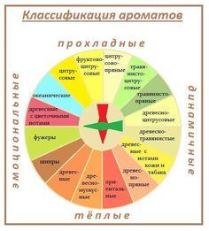 The Flash Season, Instagram Background, Cosmetics & Perfume, Book Of Shadows, Herbal Medicine, Doterra, Diy Beauty, Aromatherapy, Herbalism