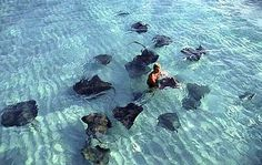 Swimming with sting rays, Cayman Islands. I'm not gonna lie - this completely freaked me out. But I'm glad I did it!