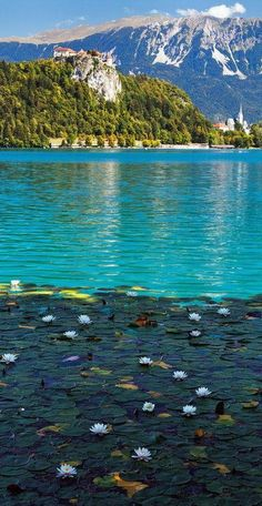 #Lake_Bled, #Slovenia http://en.directrooms.com/hotels/country/2-118/